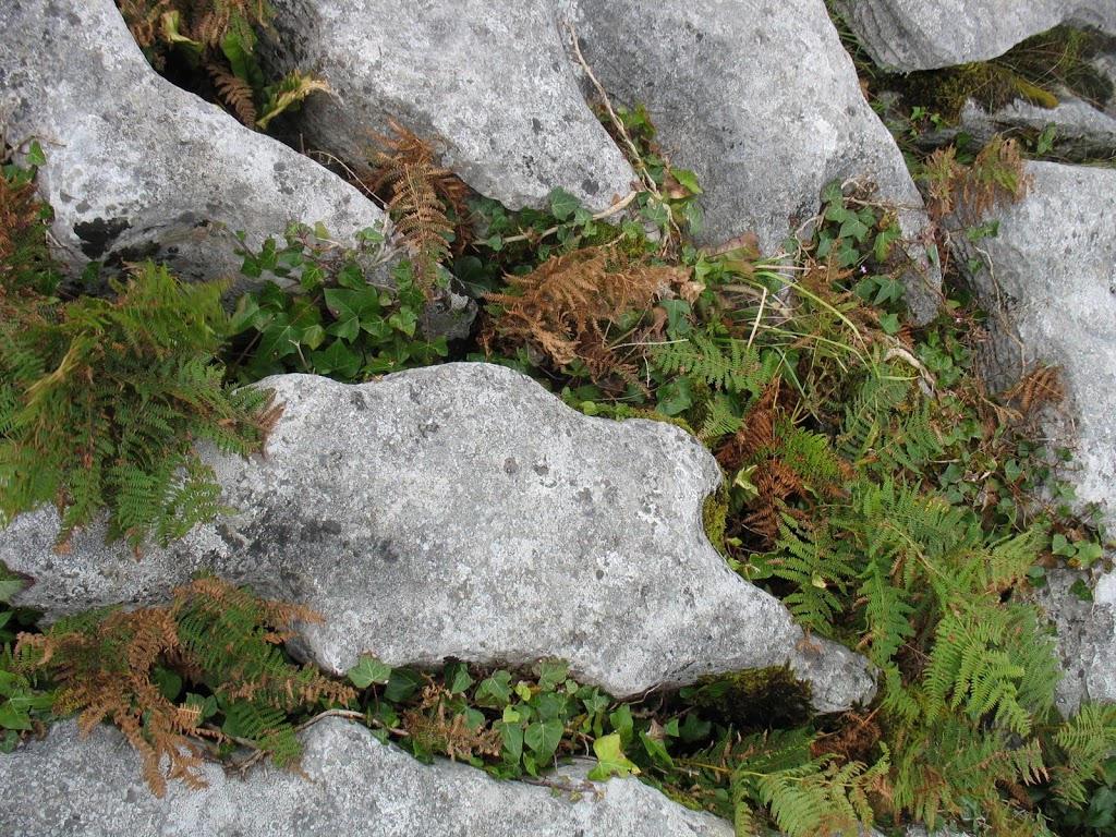 stone-formation-in-the-burren